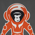 Tom Mayer | Monkey Crisis On Mars (@monkeycrisisonmars) Avatar