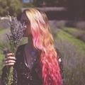 Ariana Victoria Rose (@arianavictoriarose) Avatar