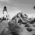 Earth Stone Feather Bone (@earthstonefeatherbone) Avatar