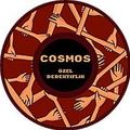 Cosmos Özel Dedektiflik (@cosmosozeldedektif) Avatar