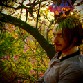 Peter Stone (@ether-stone) Avatar
