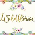 Wildflower  (@wildflowerclothingdesigns) Avatar