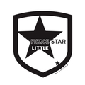 @fiercelittlestar Avatar