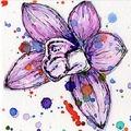 PurpleOrchidArt (@purpleorchidart) Avatar