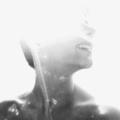 Niyousha (@niyousha) Avatar