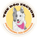 THE DOG FACTOR (@thedogfactor) Avatar