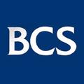 BCS (@boxmakingmachine) Avatar