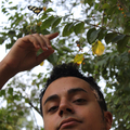 Reis Photo (@reisphoto) Avatar