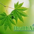 Healthid (@healthaid) Avatar