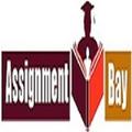 Assignment (@assignmentbay) Avatar
