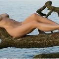 Gina (@ginamarnaboorscap) Avatar