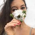 Tahlia Rea (@tillashi) Avatar
