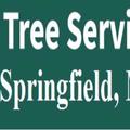 Tree Service Springfield MA (@treeservicespringfieldma) Avatar