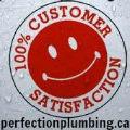 Perfection Plumbing & Drain Cleaning Ltd. (@perfectionplumbing) Avatar