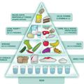 Pirámide alimenticia (@piramide) Avatar
