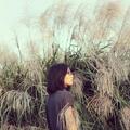 Tsou Chia Chin (@tsouhare) Avatar