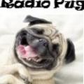 RÁDIO PU (@radiopug) Avatar