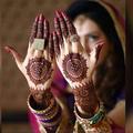 Mehndi Designs (@imehndidesigns) Avatar
