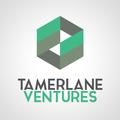 Tamerlane Ventures (@tamerlaneventures) Avatar