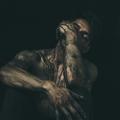 Dennis F (@dennisfl) Avatar