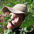 Garden Funk (@rainingkale) Avatar