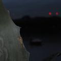 David Inglesfield (@dubmill) Avatar