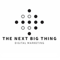 The Next Big Thing (@tnbt) Avatar