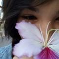 cintia (@twotriplex) Avatar
