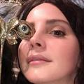 felipe (@venicebitch) Avatar