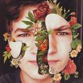 guilherme 🌹🥀 (@gingerbywho) Avatar