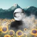 Renato Kolberg (@renatokolbergart) Avatar