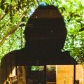 Almada  (@almadavieira) Avatar