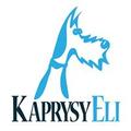 KaprysyEli.pl (@kaprysyeli) Avatar