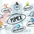 Pumex Computing (@pumexcomputing) Avatar