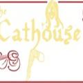 The Cathouse (@cathous) Avatar