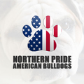 Northern Pride American Bulldogs (@npabulldogs) Avatar