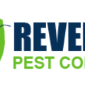 Rat Removal (@ratremoval) Avatar