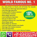 Love Problem Solution- Vashikaran Specialist (@astrologerhbshastri) Avatar
