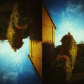 Marek Juras (@poetryphotos) Avatar