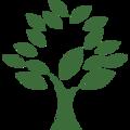 tree stylin (@treestylin) Avatar