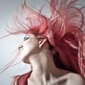 Hairpro (@hairproject) Avatar