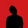 Steven (@nlsteven) Avatar