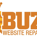 BUZZ Website Repair (@wpwebsiterepair) Avatar