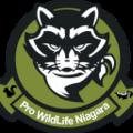 Pro Wildlife Niagara (@niagarawildlife) Avatar