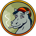 420 pony (@420pony) Avatar