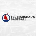 Baseball Betting Picks (@baseballtcl17) Avatar
