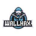 Wallhax (@wallhax) Avatar