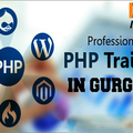 php training institute in gurgaon (@daainfotech) Avatar