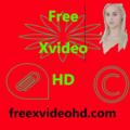 Free XvideoHD (@freexvideohd) Avatar