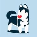 Pet Lovers Centro Canino (@petlovers) Avatar
